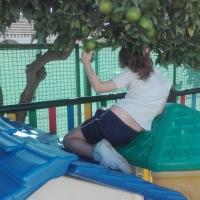 Cuando Alba bajó del tejado azul